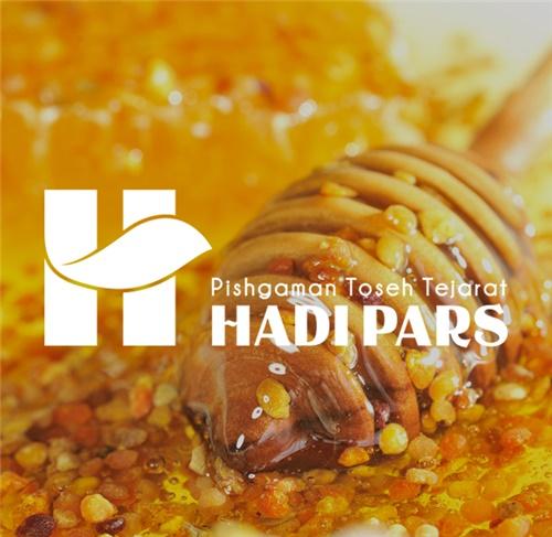 طراحی نشان شرکت هادی پارس