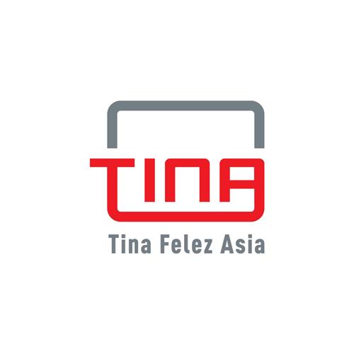 طراحی وب سایت شرکتی- تینا فلز آسیا