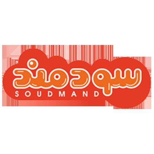 طراحی وب سایت شرکتی  - شرکت سودمند