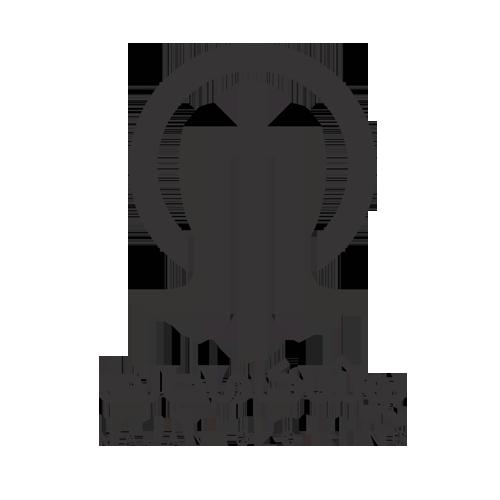 طراحی وب سایت شرکت ماجانی