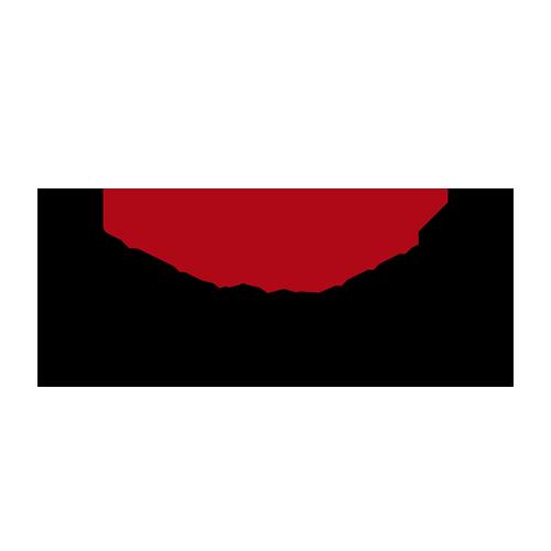 طراحی وب سایت شرکتی- پارسیان چوب