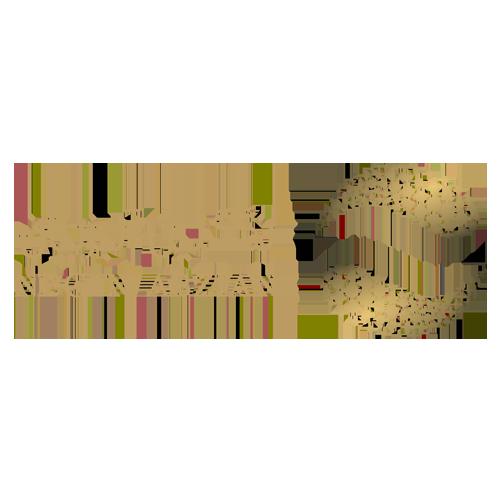 طراحی وب سایت شرکتی- نگین آبزیان