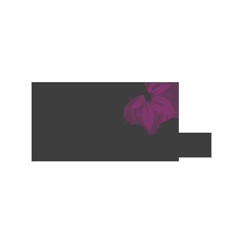 طراحی وب سایت فروشگاهی - فروشگاه نارین فلاور
